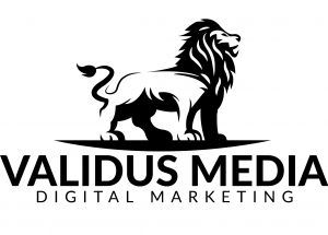 validus media website design ppc seo social media management google adwords branding mobile apps